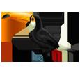 Toucan ##STADE## - robe 46