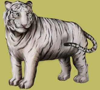 Tigre blanc ##STADE## - robe 9